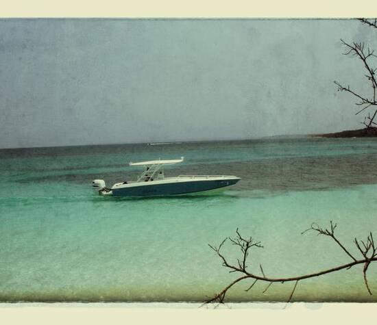 Thalasa Boat Trips